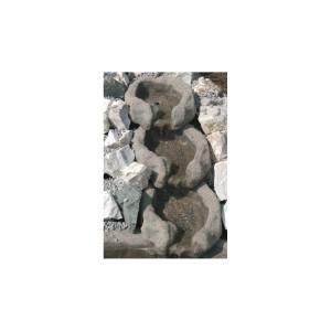 Moorauge einzeln multicolour 35-40cm